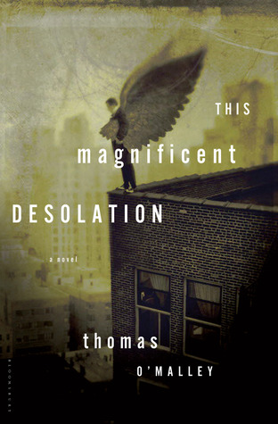 this-magnificent-desolation